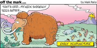 Funny Acupuncture Shelbourne Physiotherapy