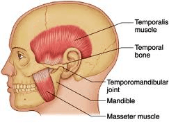 TMJ Physiotherapy in Victoria BC
